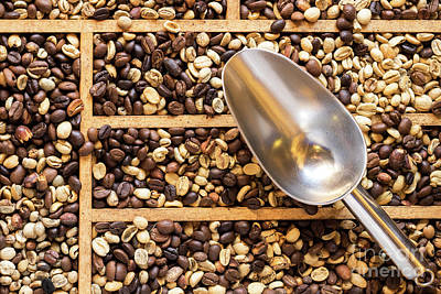 Photograph - Coffee Beans 07 by Rick Piper Photography