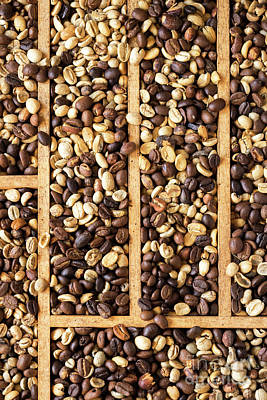 Photograph - Coffee Beans 10 by Rick Piper Photography