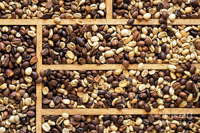 Photograph - Coffee Beans 11 by Rick Piper Photography