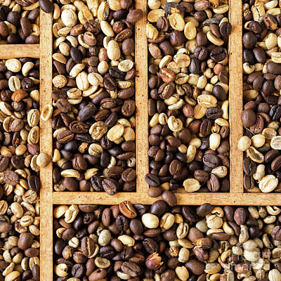 Photograph - Coffee Beans 12 by Rick Piper Photography