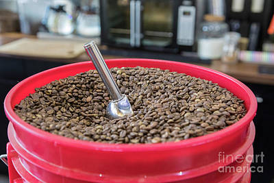 Photograph - Coffee Beans by Jim West