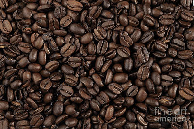 Photograph - Coffee Beans by Olga Hamilton