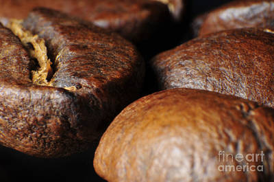 Photograph - Coffee Beans by Robert WK Clark