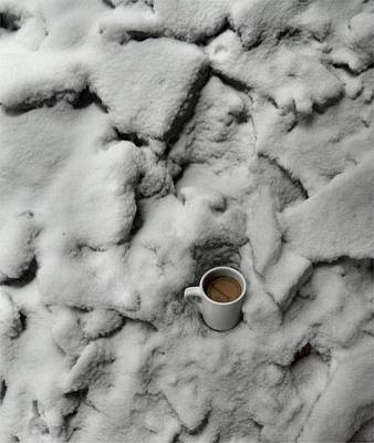 Antlers - Coffee On The Rocks by T Cook