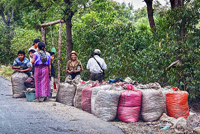 Photograph - Coffee Pickers In Guatemala by Tatiana Travelways