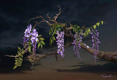 Digital Art - Cogan's Wisteria Tree by IM Spadecaller