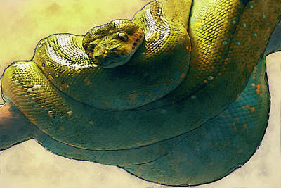 Coiled Art Print by Jack Zulli