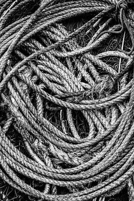 Photograph - Coiled Rope by David Hare