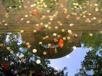 Custom Sinks Photograph - Coins In A Fountain by Yali Shi