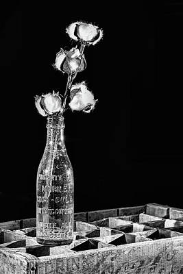 Photograph - Coke And Cotton Still Life Black And White by JC Findley