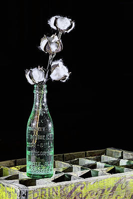 Photograph - Coke And Cotton Still Life by JC Findley