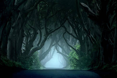 Cold And Blue Morning At Dark Hedges Art Print