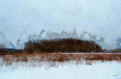 Photograph - Cold And Grey by Spyder Webb