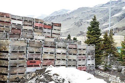 Photograph - Cold Apple Crates by Tom Cochran