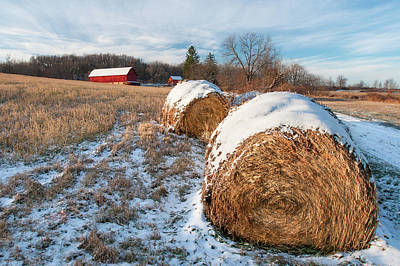 Photograph - Cold Bales by Todd Klassy