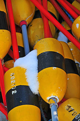 Photograph - Cold Bouys by Mike Martin