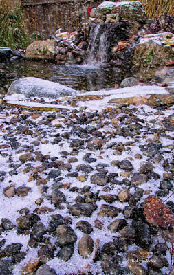 Photograph - Cold Day At The Pond by Mick Anderson