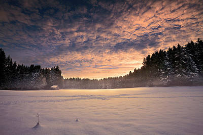 Photograph - Cold Morning by Dominique Dubied