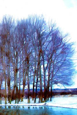 Photograph - Cold Pond by Spyder Webb