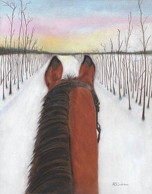 Drawing - Long Cold Ride by Arlene Crafton