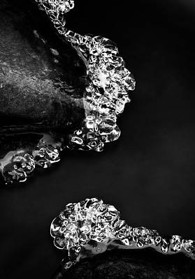Photograph - Cold White Diamonds by Darren White