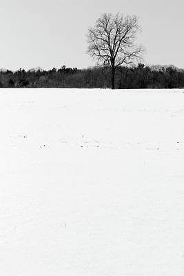 Photograph - Cold Winter Field Bw by Mary Bedy