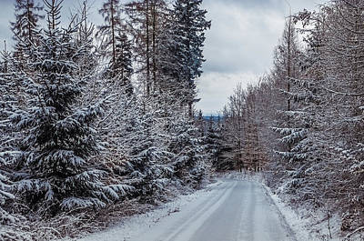 Photograph - Cold Winter Way by Jenny Rainbow