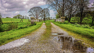 Photograph - Colebrooke Park - Country Fermanagh Northern Ireland by Lexa Harpell