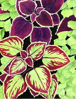 Painting - Coleus And Fern by Tammie Painter