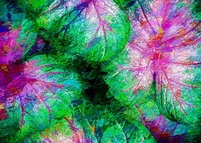 Abstract Digital Photograph - Coleus by Paul Wear