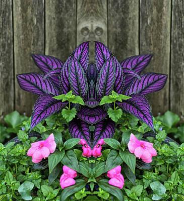 Photograph - Coleus Plant Pareidolia by Constantine Gregory