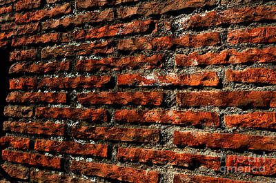 Photograph -  Colosseum Interior Wall by Eric Liller