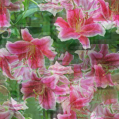 Photograph - Collage In Pink Lily by rd Erickson