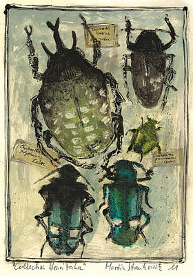 Painting - Collection Of Beetles,entomologic Still Life  by Martin Stankewitz