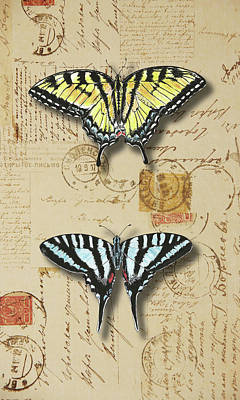 Simplicity Mixed Media - Collection Of Butterflies by Masha Batkova