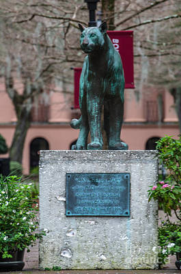 Photograph - College Of Charleston Mascot by Dale Powell