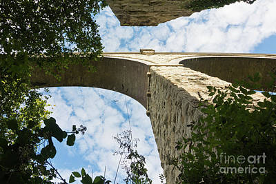 Photograph - College Wood Viaduct Penryn Cornwall by Terri Waters
