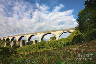 Photograph - College Wood Viaduct Penryn by Terri Waters