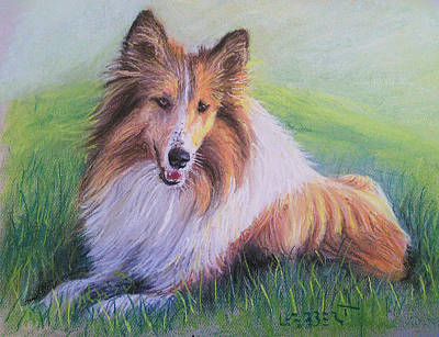 Collie Art Print by Dave Luebbert