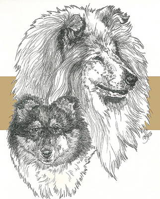Herding Dog Mixed Media - Collie -rough- Father And Son by Barbara Keith