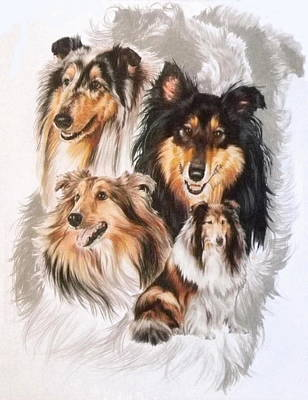 Collie W/ghost Art Print by Barbara Keith