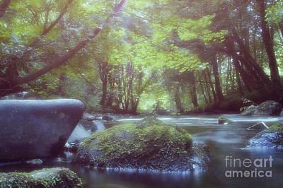 Colligan River Dream 2 Art Print