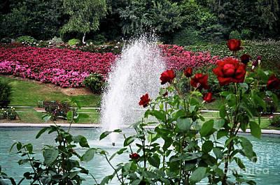 Photograph - Colline Des Oiseaux Roses by Donna L Munro