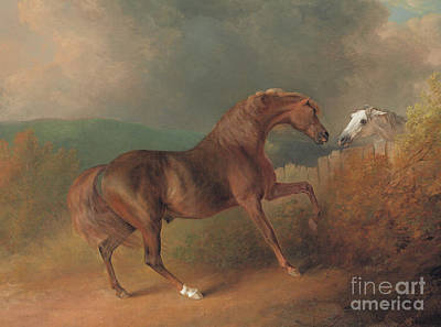 Colonel Thornton's Jupiter With A Grey Mare  Art Print by Sawrey Gilpin