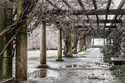Photograph - Colonnade by Todd Blanchard