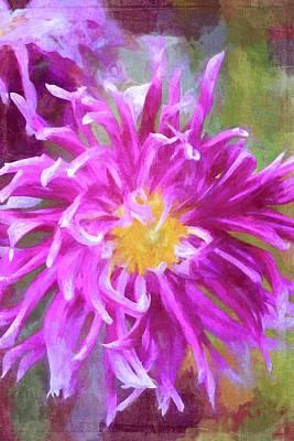 Photograph - Color 156 by Pamela Cooper