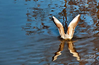 Photograph - Color Abstract Gull Wings by Odon Czintos