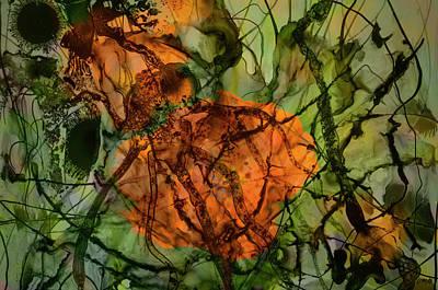 Digital Art - Color Abstraction Xx by David Gordon
