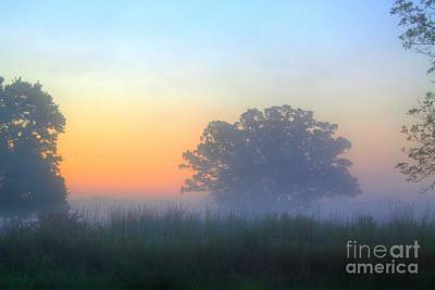 Color And Fog Art Print by Robert Pearson