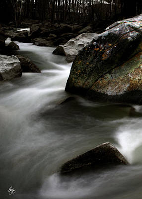 Photograph - Color And Form On The Upper Baker River by Wayne King